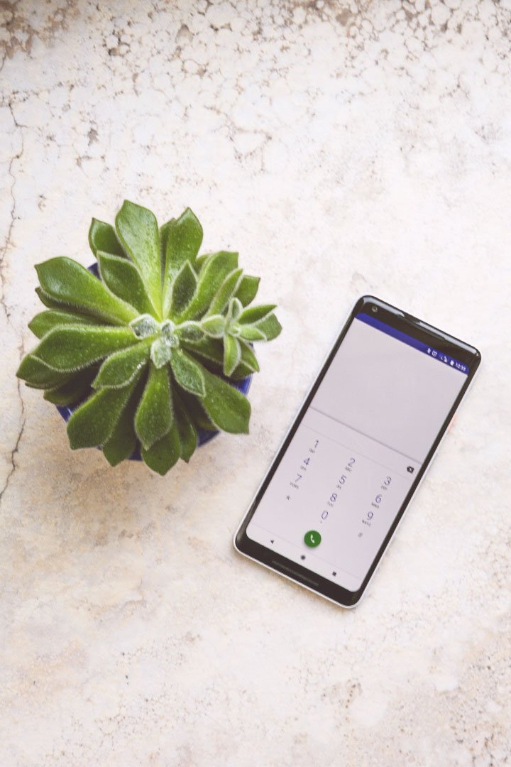 Picture of a mobile phone and a plant