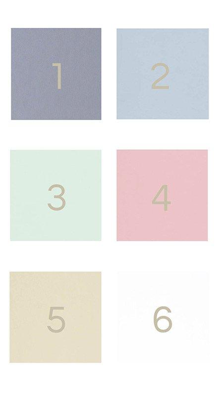 Album cover soft colours